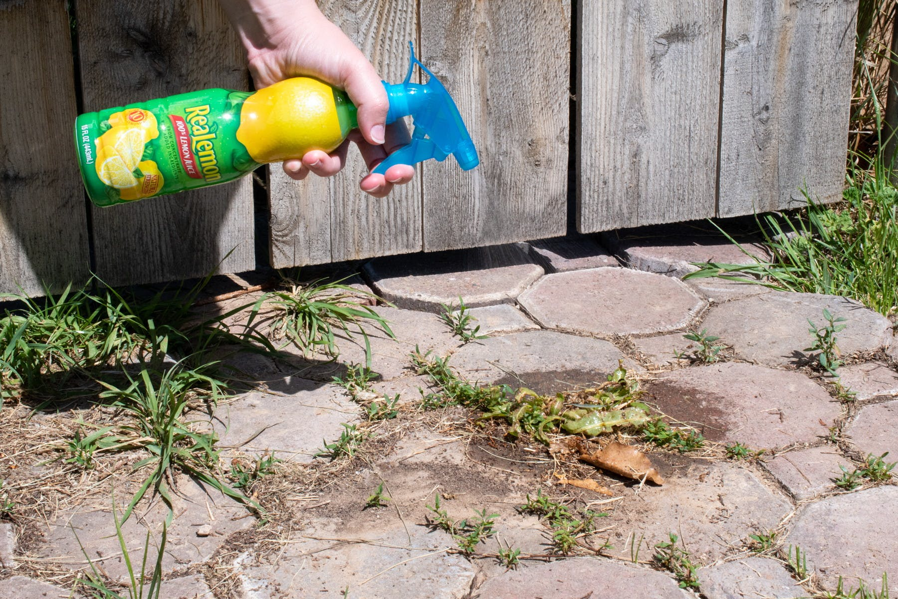 8 Simple Techniques For How Weed Killer Works