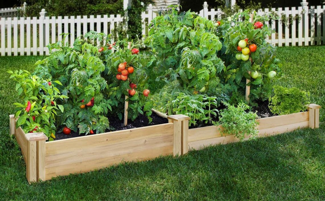 Picture of: Raised Garden Beds As Low As 55 At Home Depot The Krazy Coupon Lady