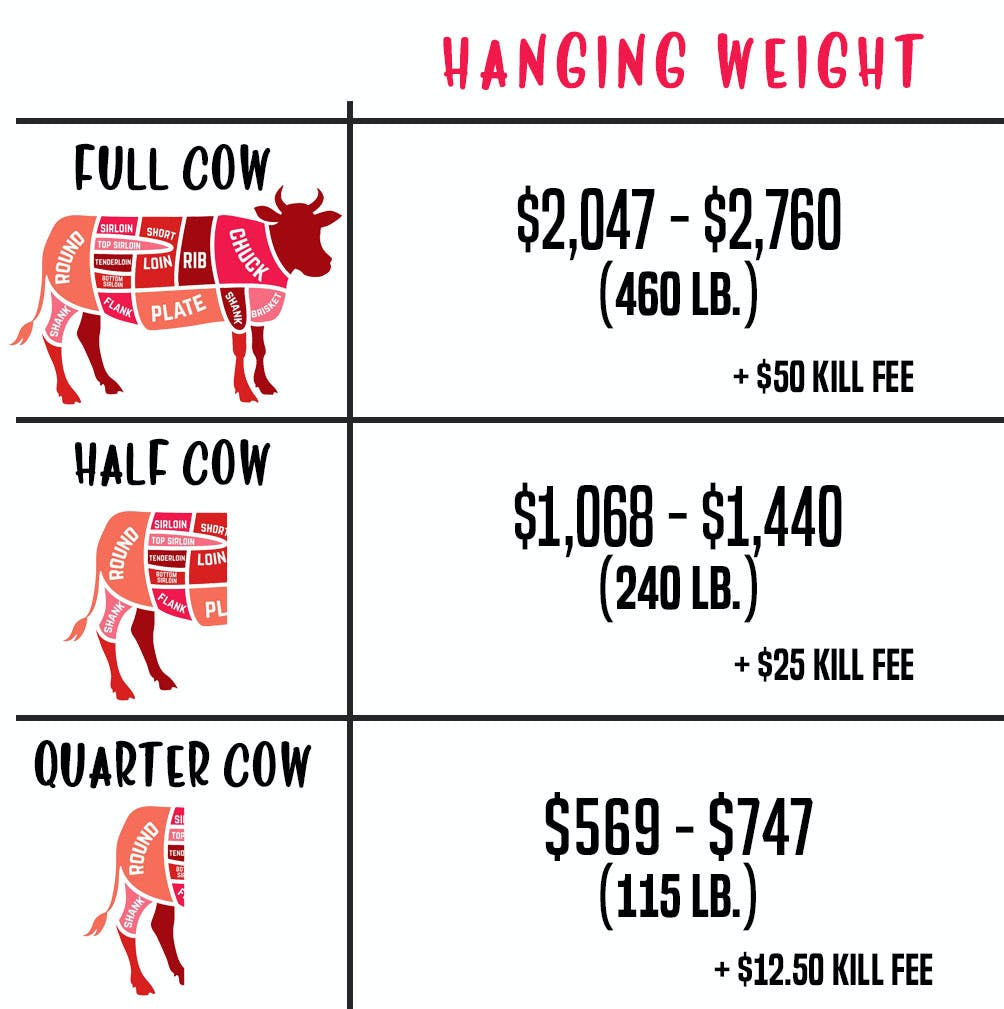 Buying a Cow: Are the Cost and Cuts of Beef Worth It ...